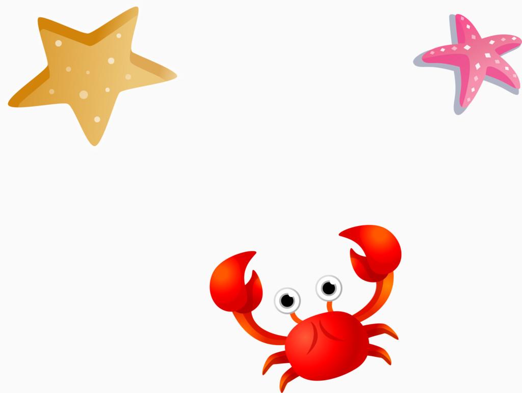 夏天主题海星红螃蟹