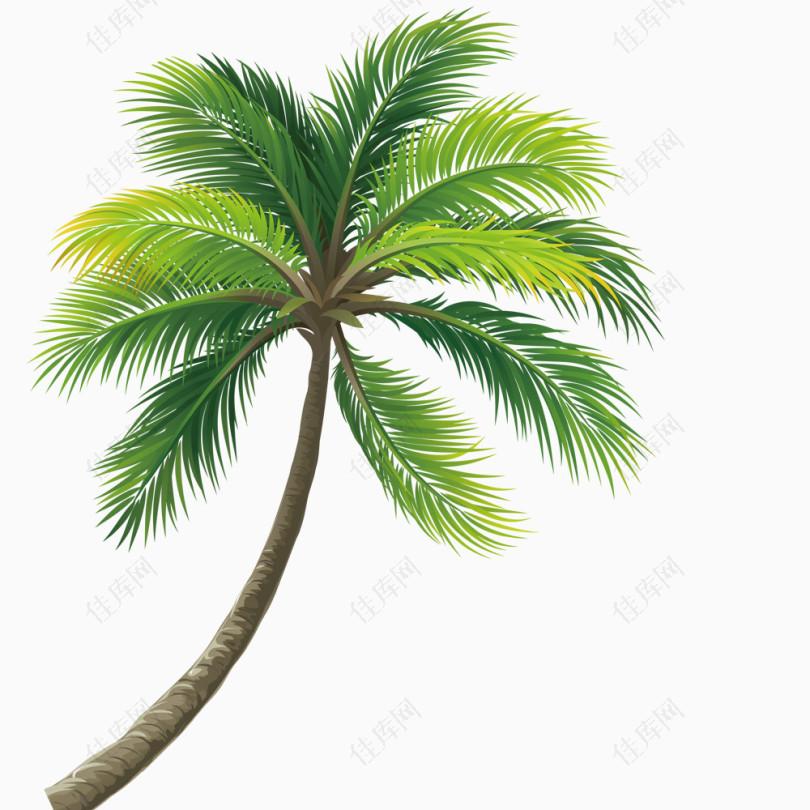 椰子树免抠元素元素_图片素材8639562建筑设计honizhong图片