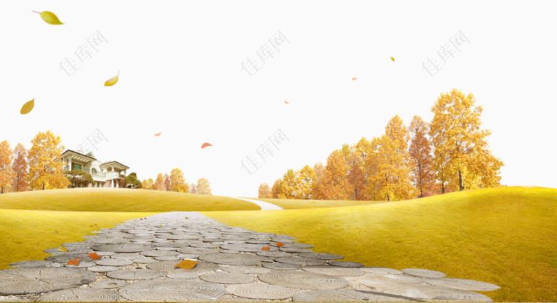 秋天落叶草地背景免抠素材
