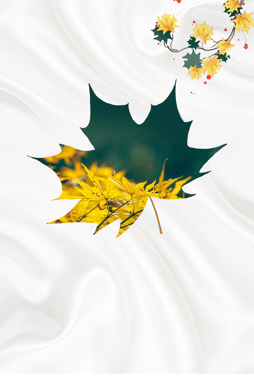 秋天背景立秋树枝树叶