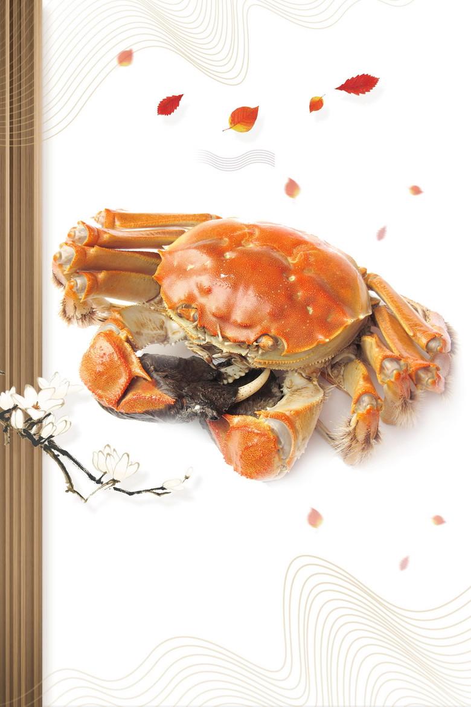 大闸蟹螃蟹美食大餐背景素材