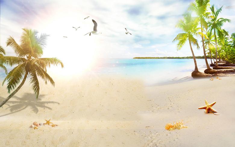 阳光海滩沙滩风景树木夏日背景素材