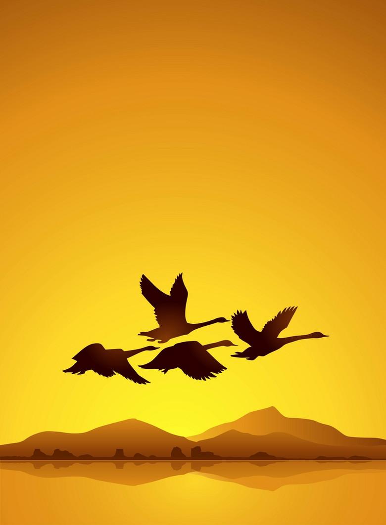黄昏海鸥风景背景