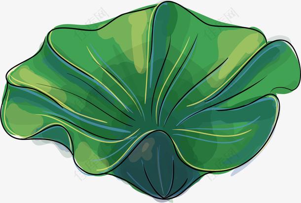 图绿色的荷叶
