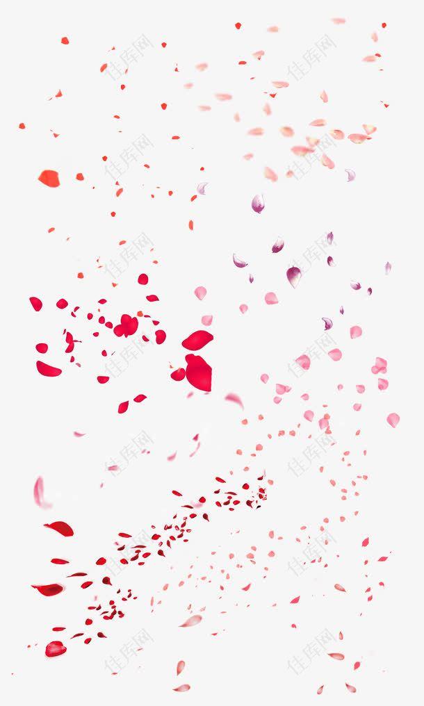 桃花花瓣    节日   鲜花