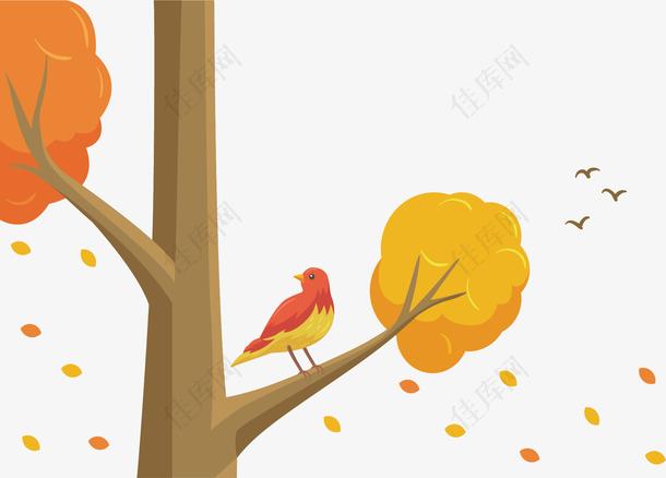 秋季落叶树枝小鸟