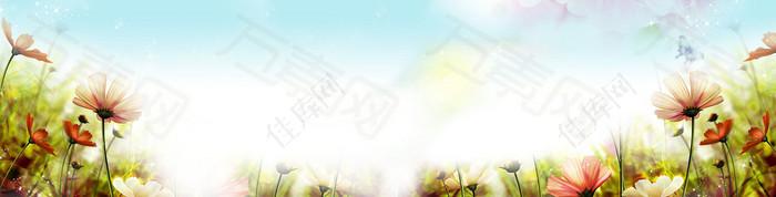 清新花花背景