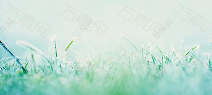 绿色清新简约时尚背景图