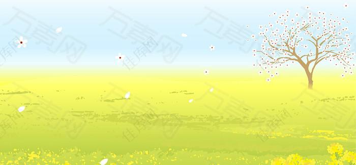 树枝花枝白色花朵黄绿色唯美背景图