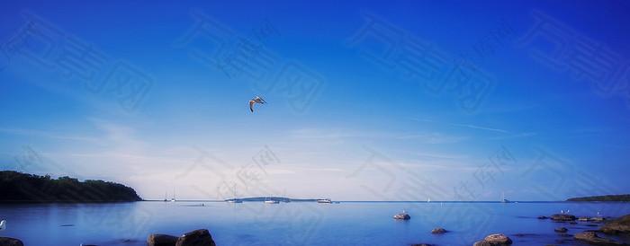 简约大气蓝色湖面飞鸟海报背景