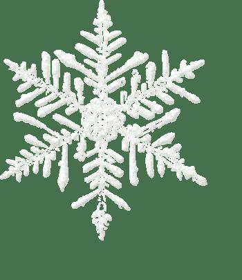 圣诞节新年雪花片