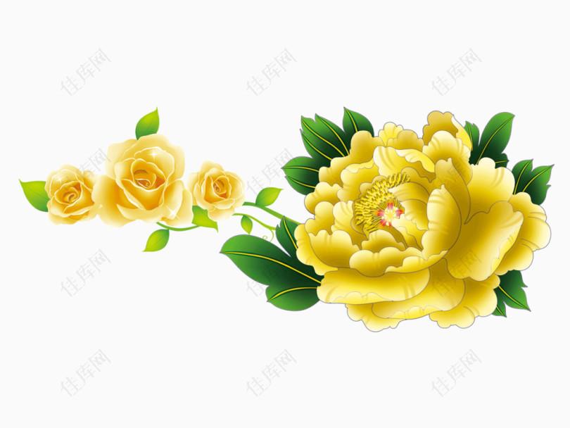 牡丹鲜花图