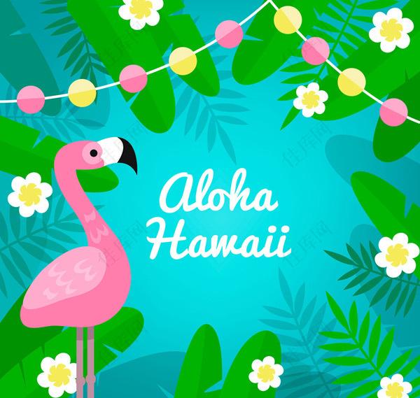 夏威夷火烈鸟