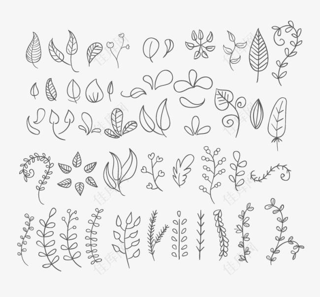 手绘花朵与树叶