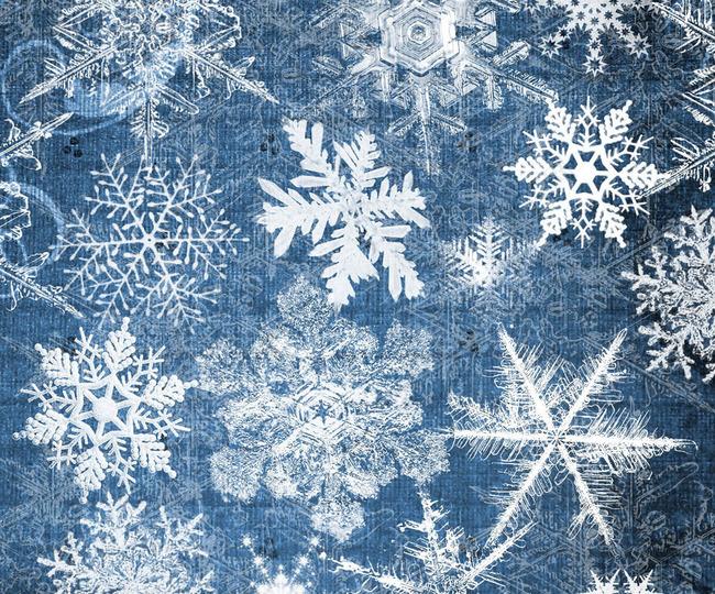 冬季冰冻特效雪花形状笔刷