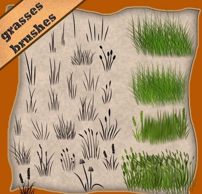 绿色草地和小草笔刷