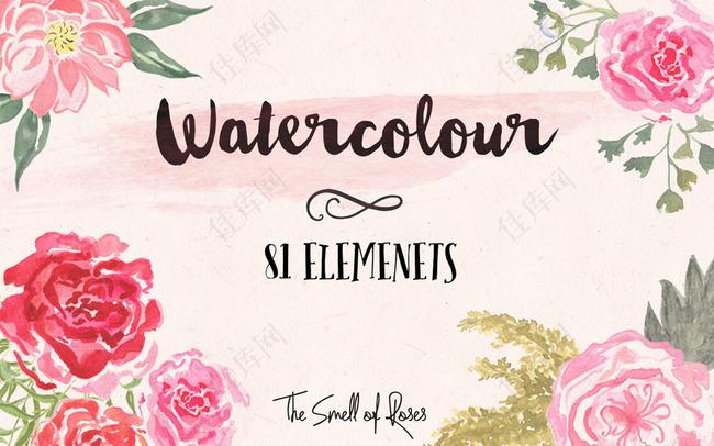 高清晰水彩花朵和花卉PS笔刷
