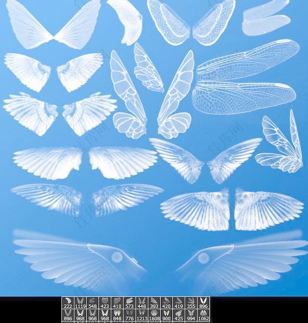 各种翅膀笔刷画笔图片