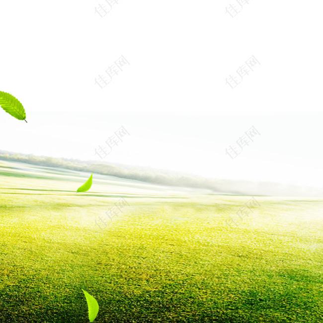 绿色草地直通车图主图钻展图绿叶清新背景