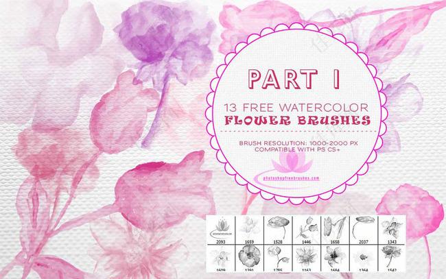 13款手绘效果花朵装饰PS笔刷V1